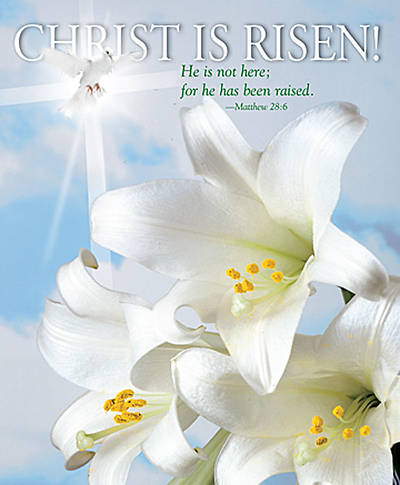 Picture of Christ is Risen! Bulletin 2008, Large Size (Package of 50)