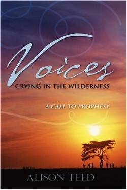 Picture of Voices Crying in the Wilderness