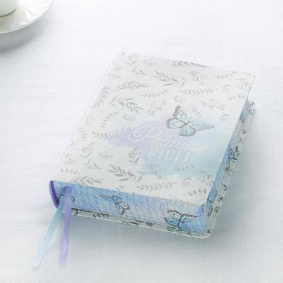 Picture of KJV My Promise Bible, Silky Butterfly