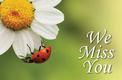 Picture of We Miss You Ladybug Postcard (Pkg of 25)