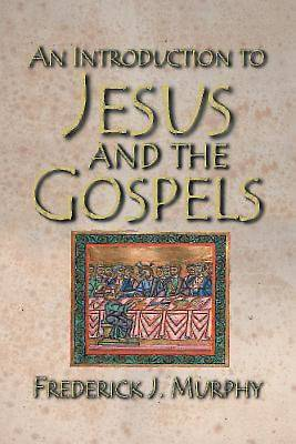 An Introduction to Jesus and the Gospels - eBook [ePub]