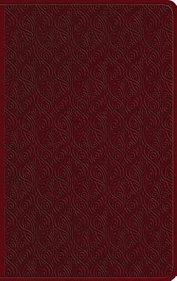 ESV Large Print Value Thinline Bible (Trutone, Ruby, Vine Design)