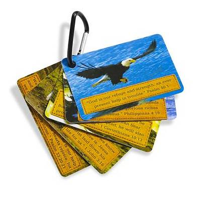Gospel Light Vacation Bible School 2012 SonRise National Park Connection Cards (pkg of 25)