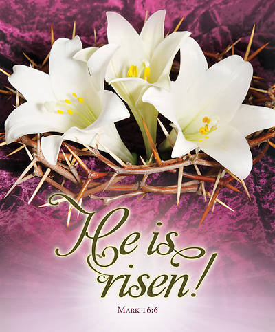 Picture of He is Risen Easter Legal Size Bulletin