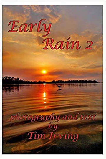 Picture of Early Rain 2 (Early Rain Series)