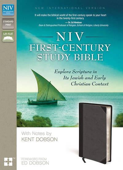 NIV Cultural Background Study Bible