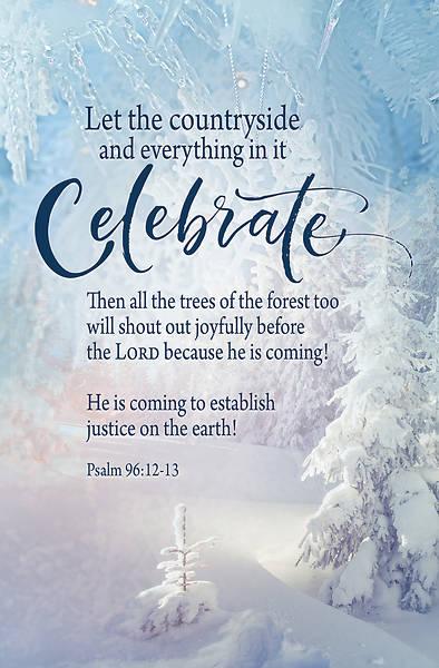 Picture of Celebrate Winter Bulletin (Pkg of 50)