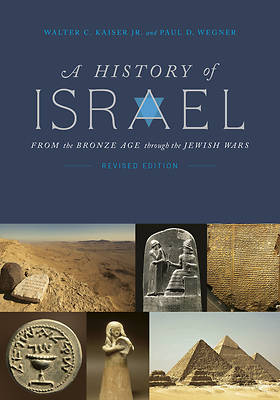 Picture of A History of Israel
