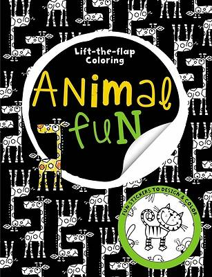 Big Busy Coloring Lift the Flap Animal Fun