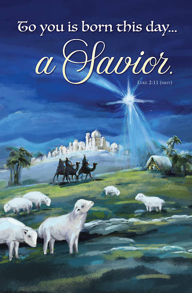 Picture of Born This Day a Savior Christmas Regular Size Bulletin