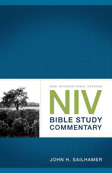 New International Version  Bible Study Commentary