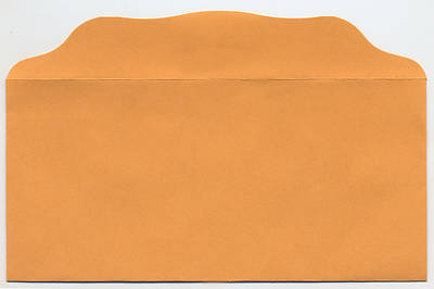 Picture of Blank Bill Size Offering Envelope - Pack of 100