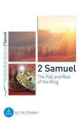 Picture of 2 Samuel