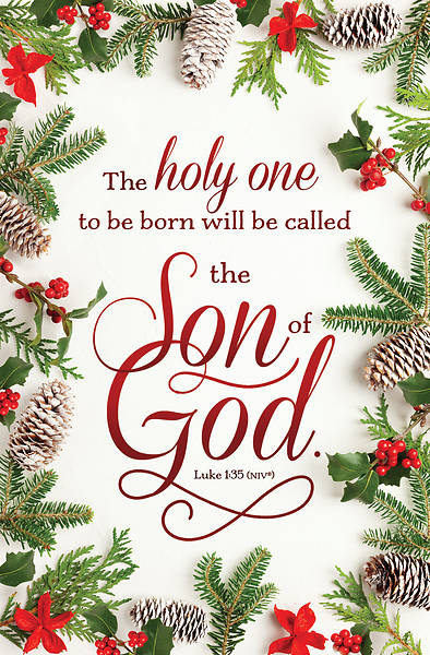 Picture of The Son of God Christmas Regular Size Bulletin