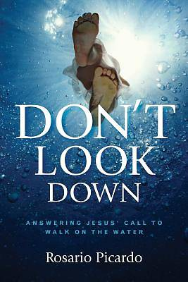 Picture of Don't Look Down