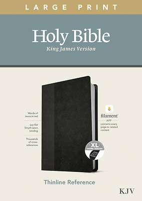 Picture of KJV Large Print Thinline Reference Bible, Filament Enabled Edition (Red Letter, Leatherlike, Black/Onyx, Indexed)