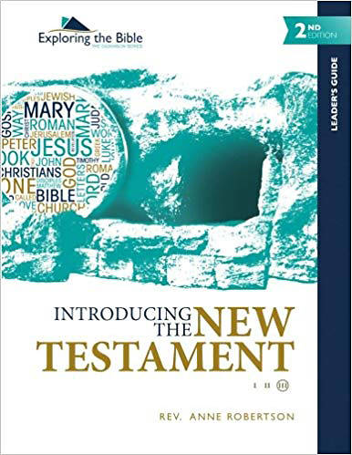 Picture of Introducing the New Testament - Leaders Guide