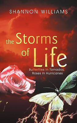 Picture of The Storms of Life