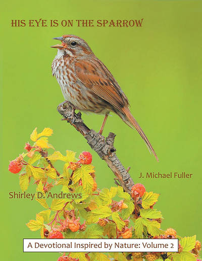 Picture of His Eye Is on the Sparrow