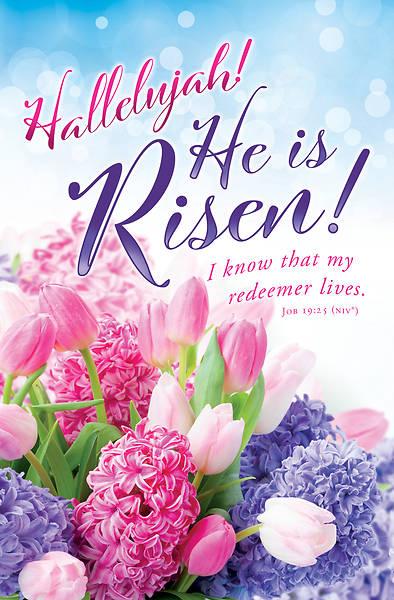Picture of Hallelujah He is Risen Easter Regular Size Bulletin (Pkg of 100)