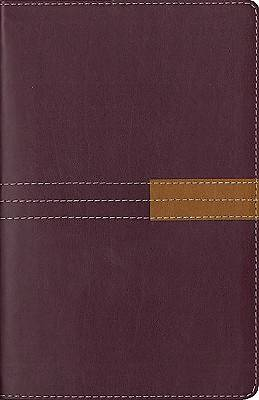 Zondervan New International Version Study Bible Personal Size