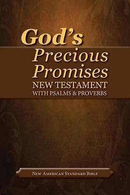 Picture of God's Precious Promises New Testament
