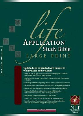 Life Application Study Large Print New Living Translation Bible