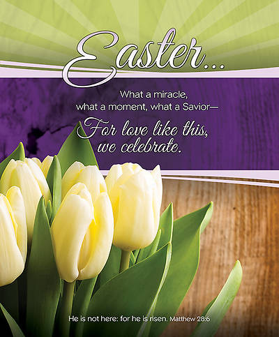 Easter Bulletin Matthew 28:6, Large Size Package of 100