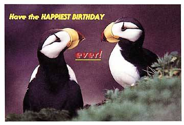 Picture of Have the Happiest Birthday Birds Postcard (Package of 25)