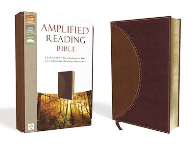 Picture of Amplified Reading Bible, Imitation Leather, Brown