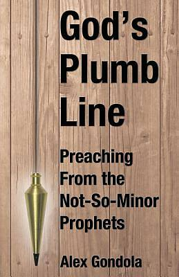 Picture of God's Plumb Line