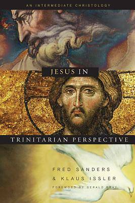Picture of Jesus in Trinitarian Perspective
