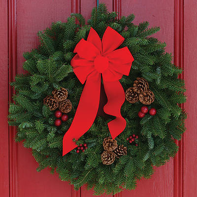 Fresh-Cut Balsam Christmas Wreath 24 Inch