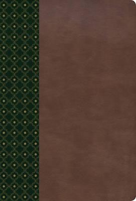 Picture of Rvr 1960 Biblia de Estudio Scofield, Verde Oscuro/Castano Simil Piel