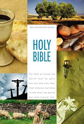 Picture of NIV Holy Bible, Textbook Edition