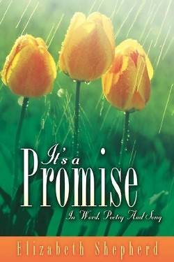 Picture of It's a Promise