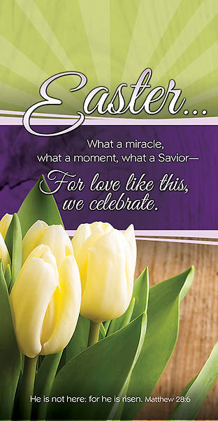 Easter Offering Envelope Matthew 28:6, Package of 100