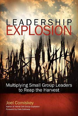 Picture of Leadership Explosion
