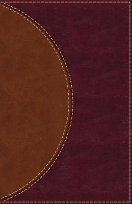 Picture of Amplified Reading Bible, Imitation Leather, Brown, Indexed