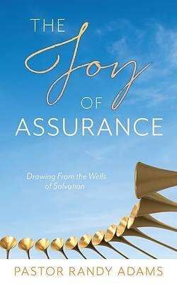 Picture of The Joy of Assurance
