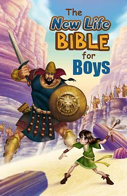 Bible for Boys-OE