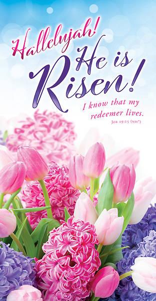 Picture of Hallelujah He is Risen Easter Offering Envelope (Pkg of 100)
