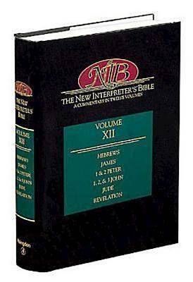 New Interpreters Bible Volume XII