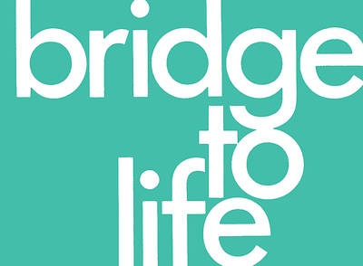 Picture of Bridge to Life (Green) 25-Pack