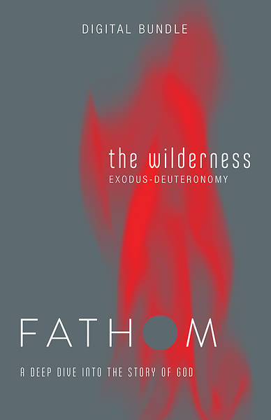 Picture of Fathom Bible Studies: The Wilderness Digital Bundle