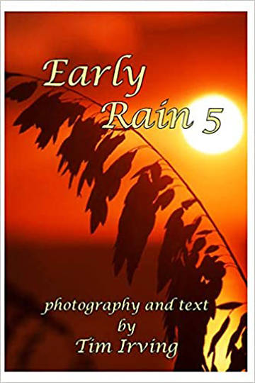 Picture of Early Rain 5 (Early Rain Series)