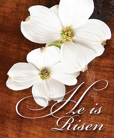 He is Risen Easter Dogwood Bulletin 2014, Large (Package of 50)