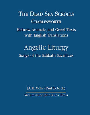 Dead Sea Scrolls Volume 4B