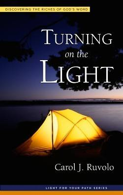 Picture of Turning on the Light