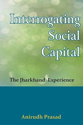 Picture of Interrogating Social Capital